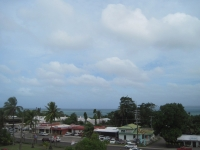 The View from the Roof